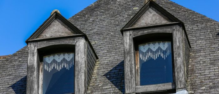 slate roof with two windows